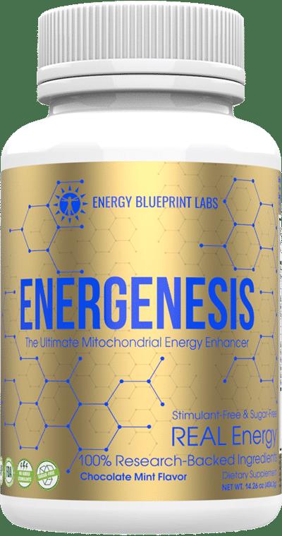 Energenesis